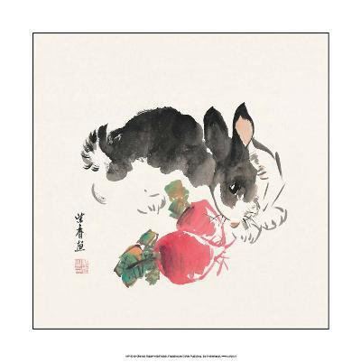 Chinese Rabbit with Turnips
