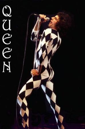 Freddie Mercury-Leotard