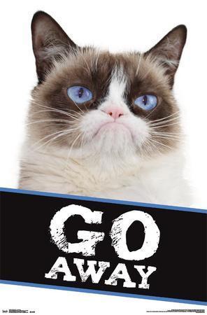 Grumpy Cat- Go Away