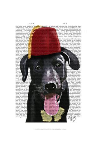Black Labrador With Fez