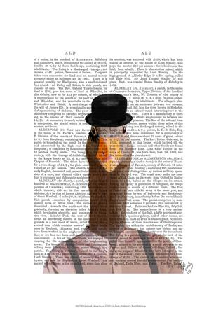 Clockwork Orange Goose