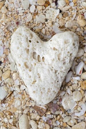 Tropical Type - Pebble Heart