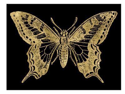 Butterfly 2 Golden Black
