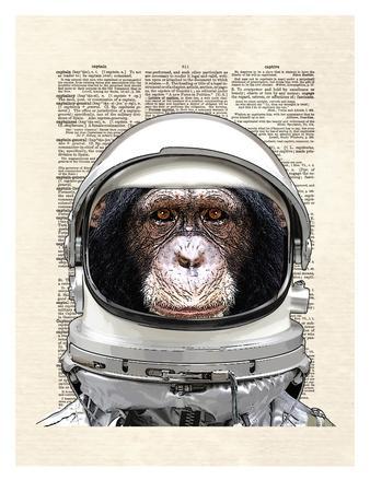 Space Chimp