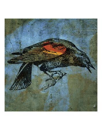 Red Wing Blackbird No. 1