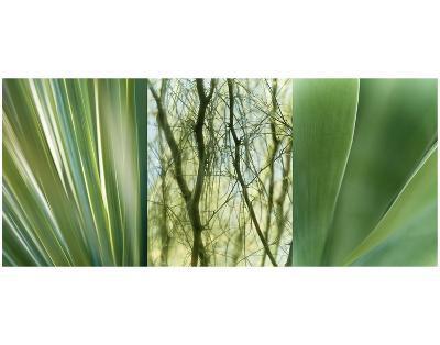 Jade Gardens