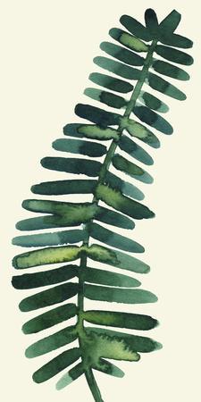 Tropical Palm Leaf II