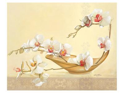Bol D'Orchidées