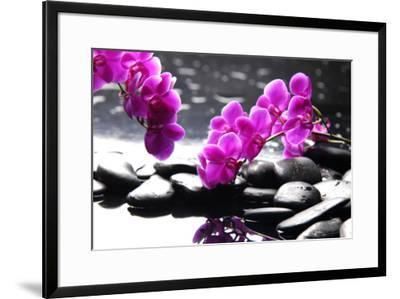 Branch Purple Orchid Flower With Therapy Stones