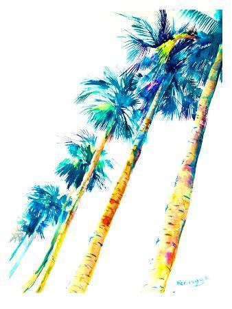 Palmtrees Hawaii
