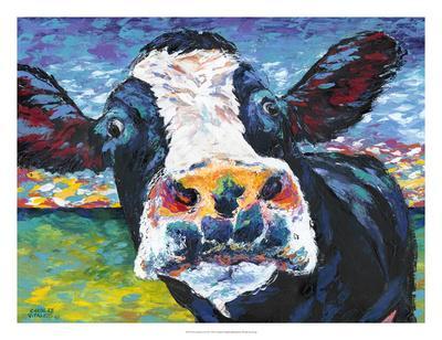 Curious Cow II