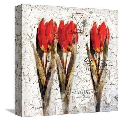Tulipa Formation