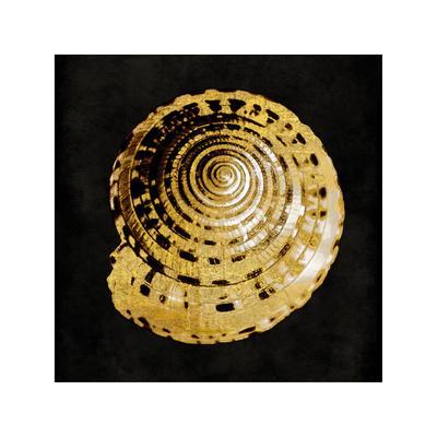 Golden Ocean Gems IV
