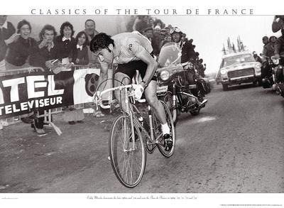 Merckx Dominates