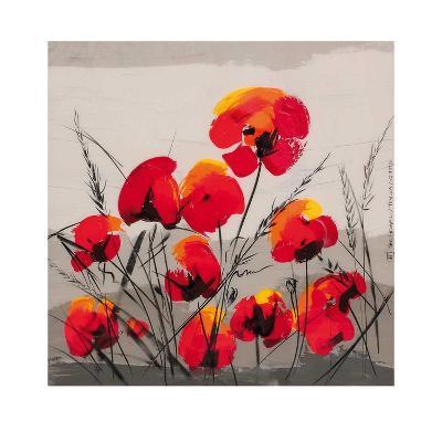 Multiple Poppies