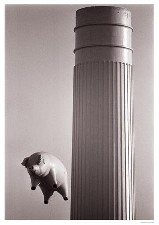 Pink Floyd- Flying Pig