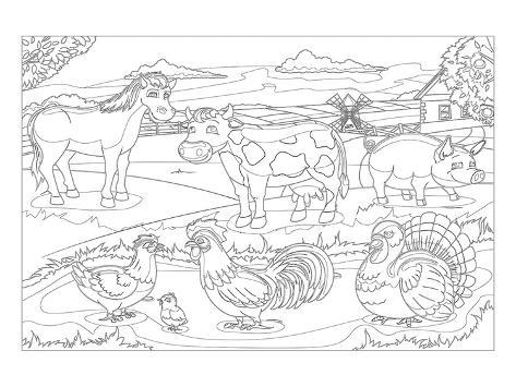 Farm Animals - Kids Coloring Art' Poster AllPosters.com