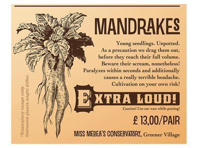Mandrakes, Extra Loud