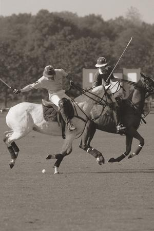 Polo In The Park I