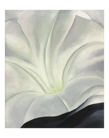 Morning Glory with Black, 1926