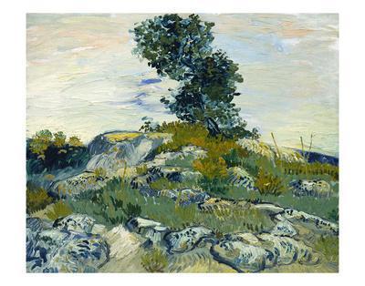 The Rocks, 1888
