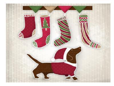 Dog with Christmas stockings