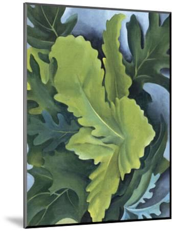 Green Oak Leaves, c.1923