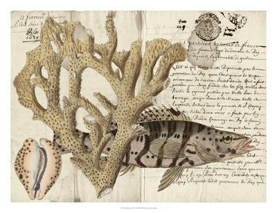 Sealife Journal II