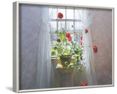 Red Geraniums (small)