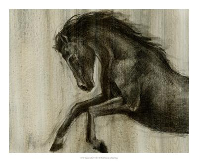 Dynamic Stallion II