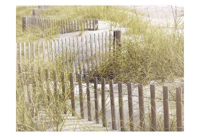 Coastal Photograpy Textured