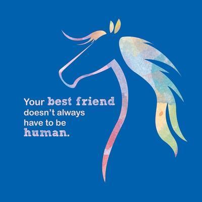 Horse Quote 11