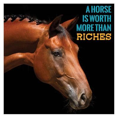 Horse Quote 6