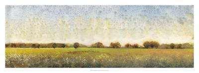 Flowering Meadow II