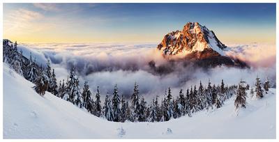 Golden Peak
