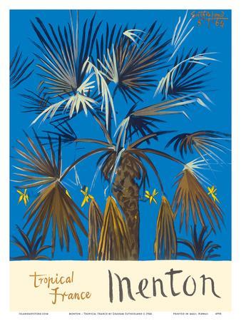 Menton - Tropical France - Palm Tree
