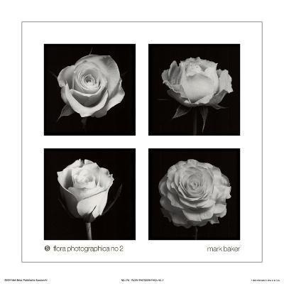 Flora Photographica No. 2