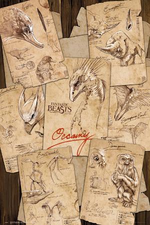 Fantastic Beasts- Field Notes