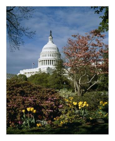 U.S. Capitol, Washington, D.C. Number 3