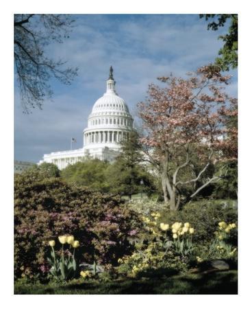 U.S. Capitol, Washington, D.C. Number 3 - Vintage Tint