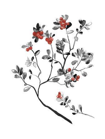 Lingonberry Branch