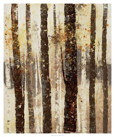 Woodland 7