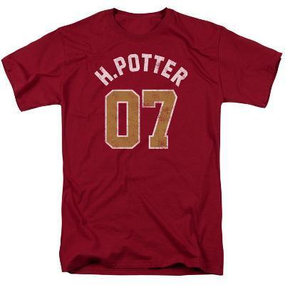 Harry Potter- H. Potter 07 Distressed