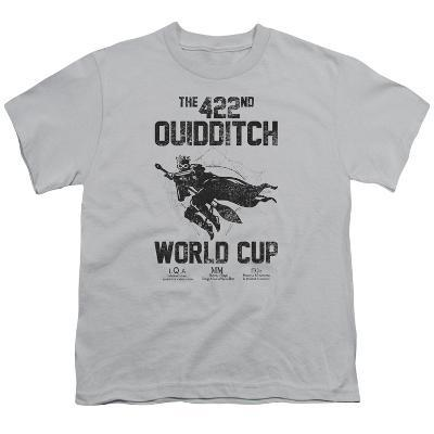 Youth: Harry Potter- 422nd Quidditch World Cup