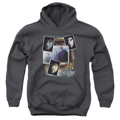 Youth Hoodie: Harry Potter- Trio Collage