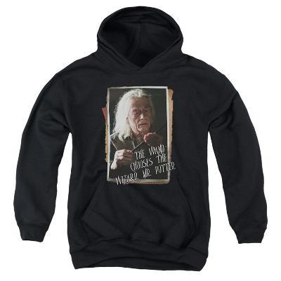 Youth Hoodie: Harry Potter- Olivander Explains Wands