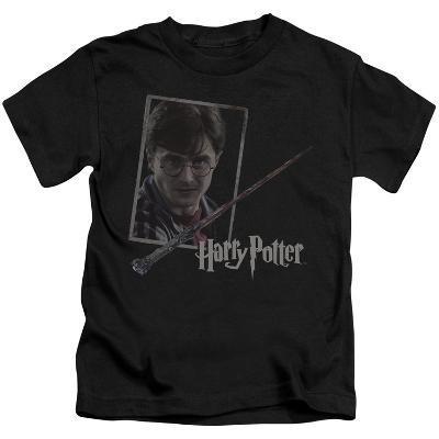 Juvenile: Harry Potter- Wand And Portrait