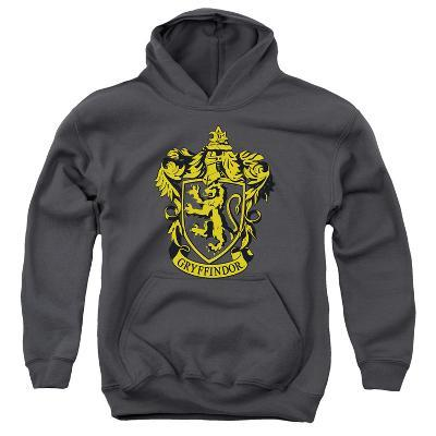 Youth Hoodie: Harry Potter- Gryffindor Crest