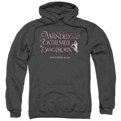 Hoodie: Fantastic Beasts- Wanded And Dangerous Chirography