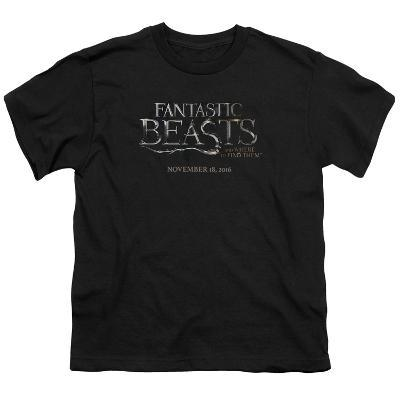 Youth: Fantastic Beasts- Movie Logo